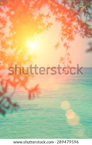 Ship in the sea behind the tree branches curtain - stock photo