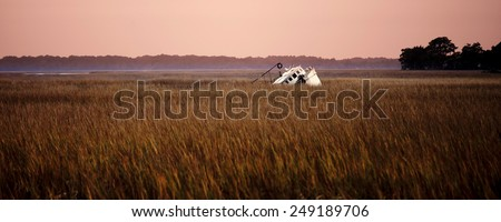 shipwrecked fishing vessel listing in the reeds - stock photo