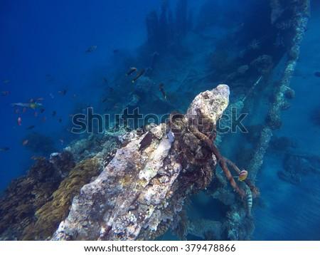Shipwrecks in Bali sea, Amed snorkeling, snorkeling in Bali, vacation in Bali, impressive sightseens in Bali, sport activity Bali island, tropica sea snorkeling, holiday diving in the sea, Indonesia - stock photo