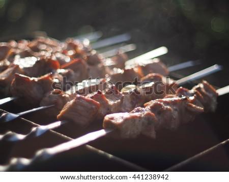 shish kebabs on skewers - stock photo