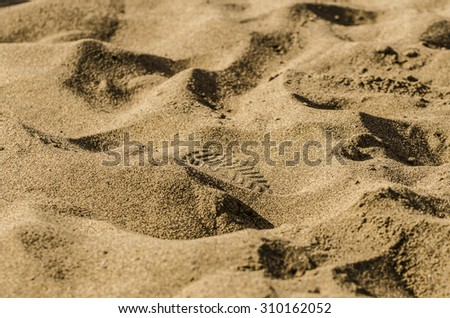 Shoe print in the sand