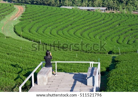 Shoot Asian women portrait in life style at tea plantation, Thailand.