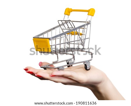 Shopping cart on a female hand, white background, copyspace - stock photo