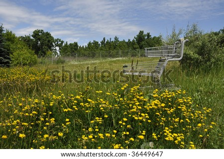 shopping cart resting on the wildflower nature area - stock photo