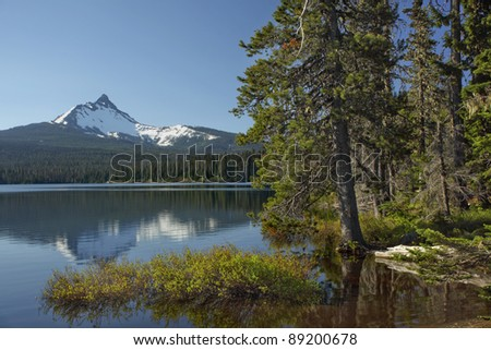 Shore line of Big Lake with Mt. Washington in the back ground located in the Oregon cascades. - stock photo