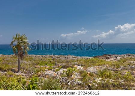 Shore of Grand Cayman Island, Cayman Islands, British Overseas Territory - stock photo