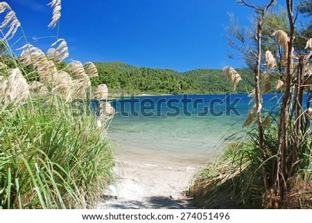 Shore of lake Waikaremoana, Te Urewera National Park in the North Island of New Zealand - stock photo