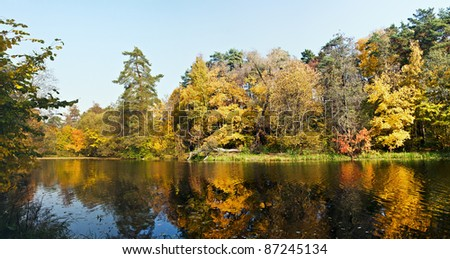 shore of the old overgrown pond autumn day - stock photo
