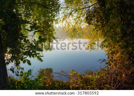 Shore of the pond, overgrown with trees and bushes in the autumn early morning