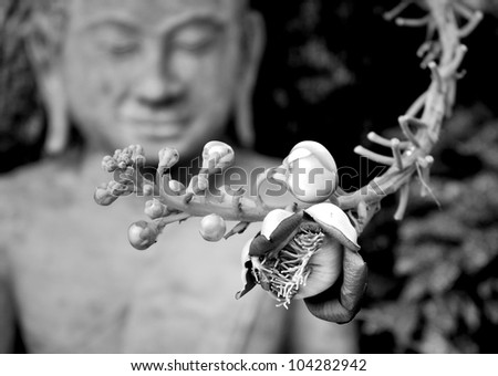 Shorea Robus flowers and Buddha Statue in Royal Palace of Cambodia - stock photo