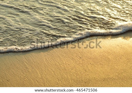 Shoreline at sunset in summer
