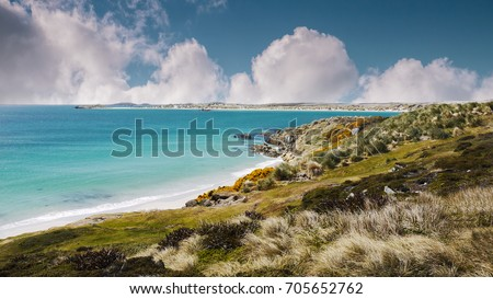 Shoreline of Falkland Islands. White sand beach and turquoise shallow water of Gypsy Cove, East Falkland Island. South Atlantic Ocean.