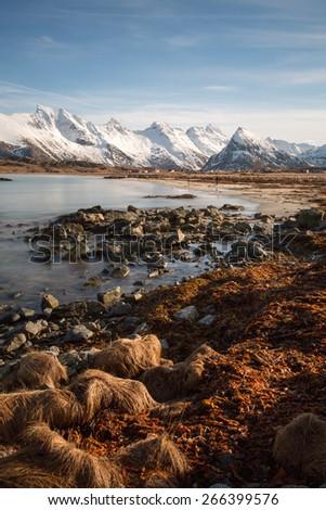 Shoreline Winter landscape, Lofoten, Norway - stock photo