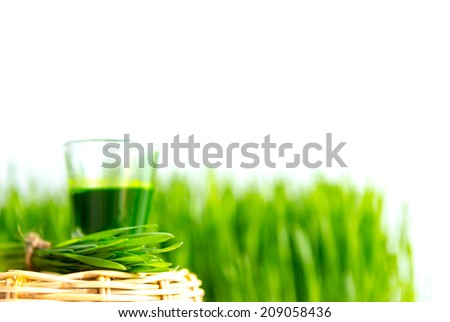 Shot glass of wheat grass with fresh cut wheat grass - stock photo