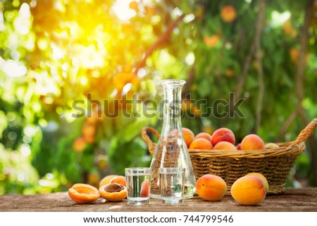 Shot glass with apricot brandy,bottle and apricots on the table