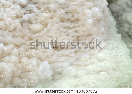 Shot in the waters of the infamously salty Dead Sea, clusters of salt crystals grouped together on what once was the branch of a bush. - stock photo