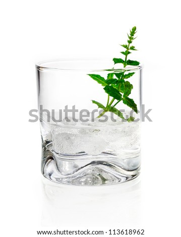 Shot of gin, vermouth or vodka served chilled over ice in a tumbler garnished with fresh herbs on a white background - stock photo