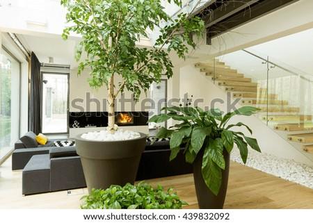 Glazed house corridor modern stairs stock photo 600261230 for Modern living room plants