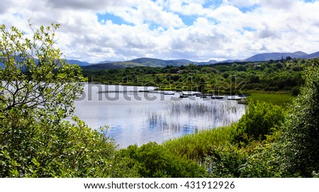 Shot of the lake with boats surrounded by luxuriant greenery in Connemora, Western Ireland.  - stock photo