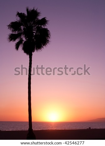 shot taken at the beaches of santa monica. - stock photo