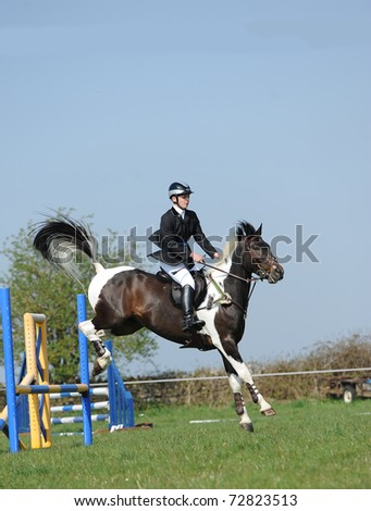 Show jumping Horse Event - stock photo