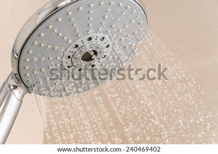 Showerhead. Photo for microstock - stock photo