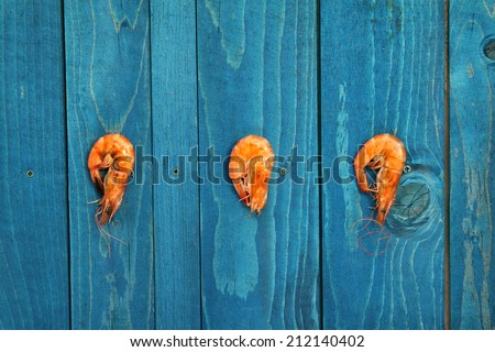 shrimp hanging on a blue wooden fence - stock photo