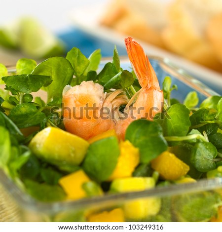 Shrimp on fresh watercress, mango and avocado salad in glass bowl with baguette in the back (Selective Focus, Focus on the shrimp) - stock photo