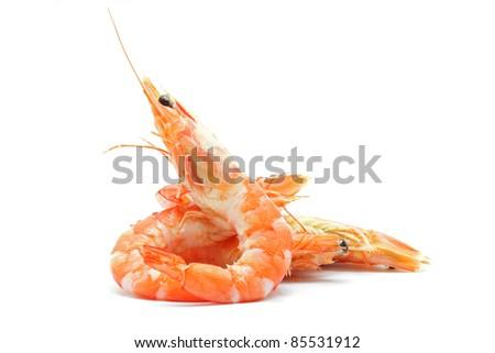 shrimp on white background - stock photo