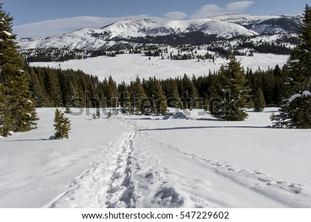Shrine Mountain trail near Colorado's Vail Pass, winter - mountain landscape.