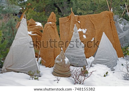 Shrubs protection from frost in winter garden. & Plant Protection Stock Images Royalty-Free Images u0026 Vectors ...