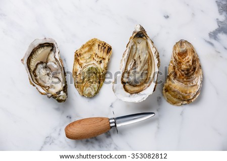 Shucked Oysters Fines de Claire and oyster knife on white marble background - stock photo
