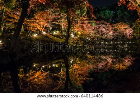Shukkeien autumn leaves