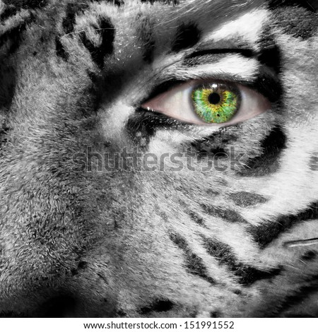 Siberian Tiger face superimposed on a human face with a green eye to create awareness for this endangered species - stock photo