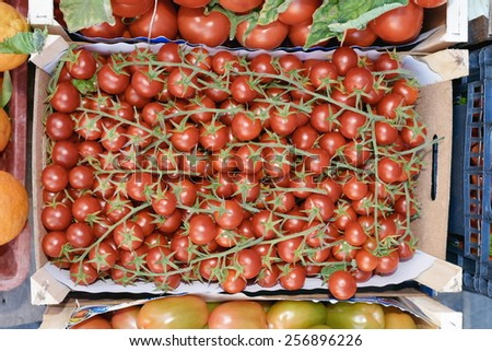 sicilian box bunches cherry tomatoes - stock photo