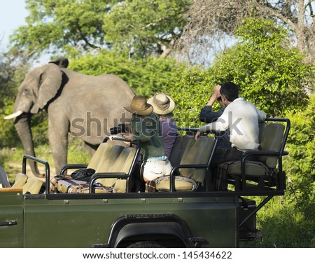 Side view of a group of tourists on safari watching elephant - stock photo