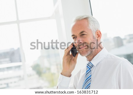 Side view of a smiling mature businessman using mobile phone in a bright office - stock photo