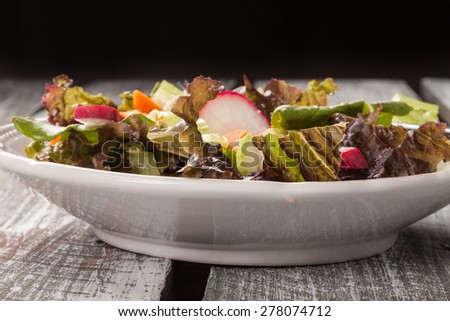 Side view of a vintage plate with an Italian chopped green garden salad on an old barn wood table - stock photo