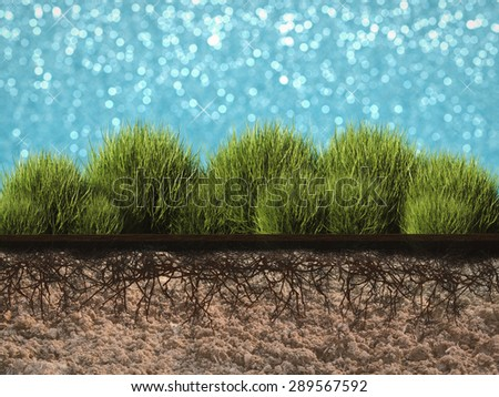 side view plant growing  - stock photo