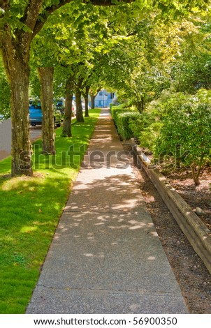 Sidewalk in shadow of a row of trees. - stock photo