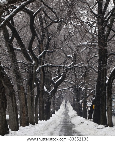 Sidewalk next to fifth avenue after ice storm - stock photo