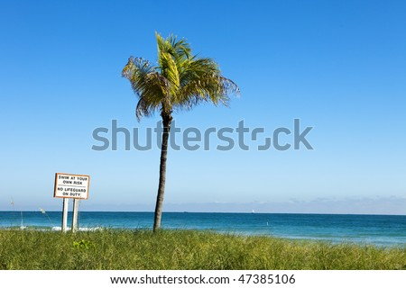 Sign in Miami titled Swim At Your Own Risk, No Lifeguard On Duty with a single palm tree on an otherwise empty beach with the ocean in the distance. - stock photo