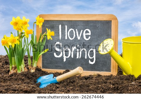 Sign in the flower bed with the text I love spring - stock photo