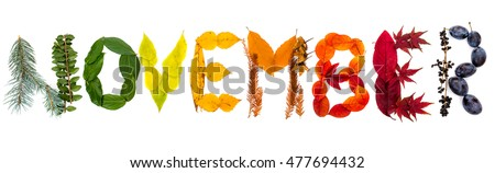 "Sign ""November"" made of autumnal natural objects. Colorful leaves and mushrooms arranged into the ""November"" text. Autumnal mood."