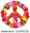 sign peace from flowers on white background. - stock photo