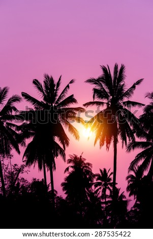 Silhouette coconut tree with sunset. Purple filter.