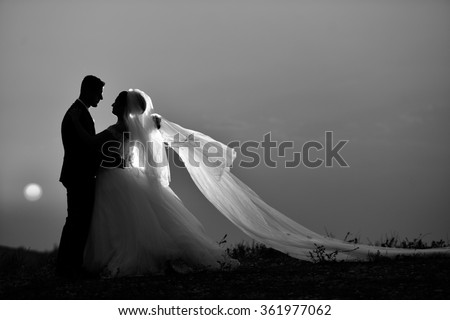 silhouette in black and white bride groom - stock photo
