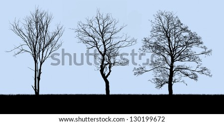 silhouette of a dead tree isolated on blue - stock photo