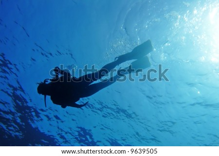 Silhouette of a diver in blue sea - stock photo