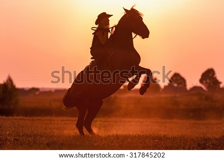 Silhouette of a girl on rearing stallion. - stock photo